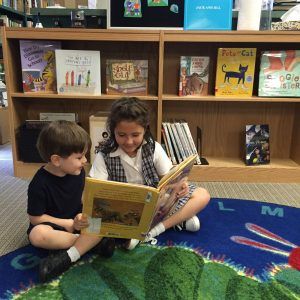 library-read-evie